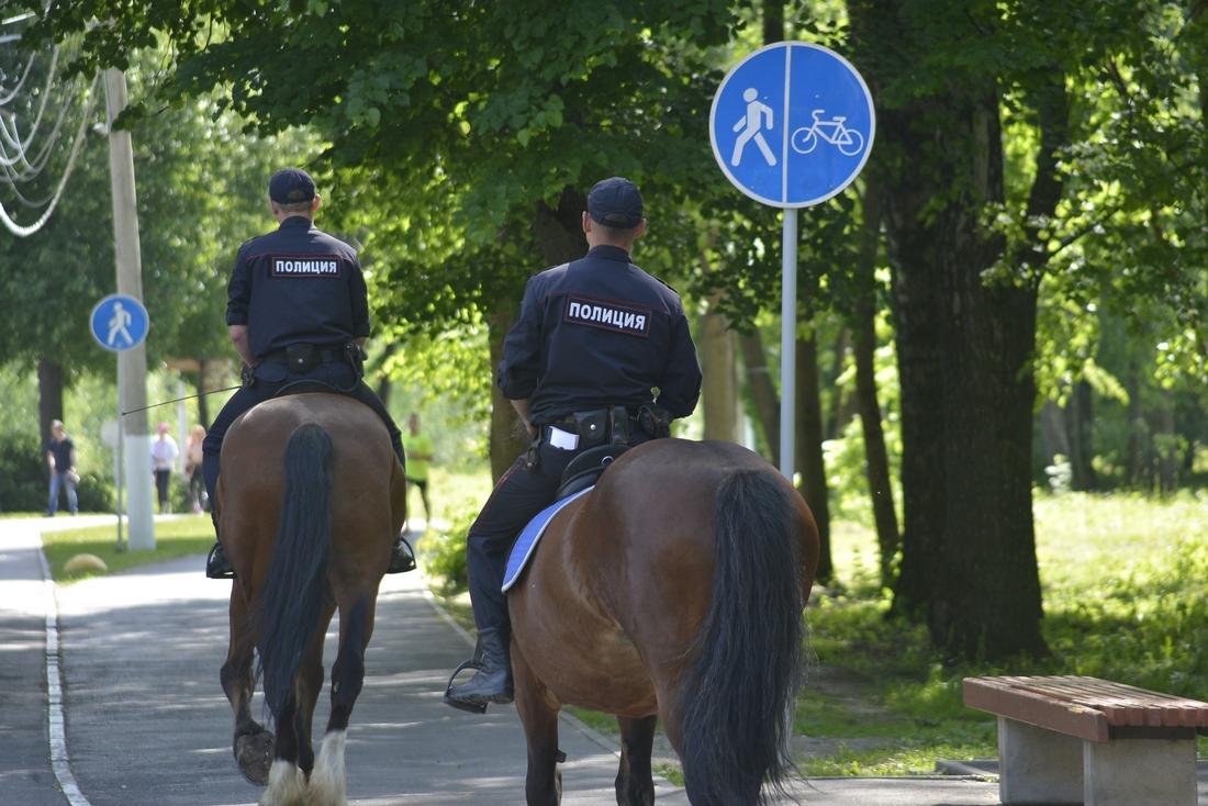 В ЦПКиО вышла на дежурство конная полиция: ФОТО
