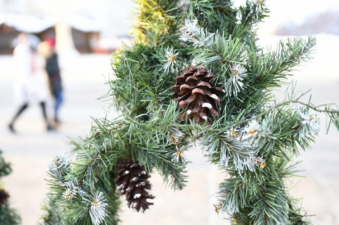 Последний день новогодних каникул: ФОТО