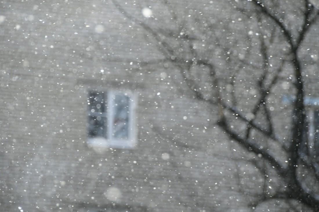 Зима не сдаётся: ФОТО