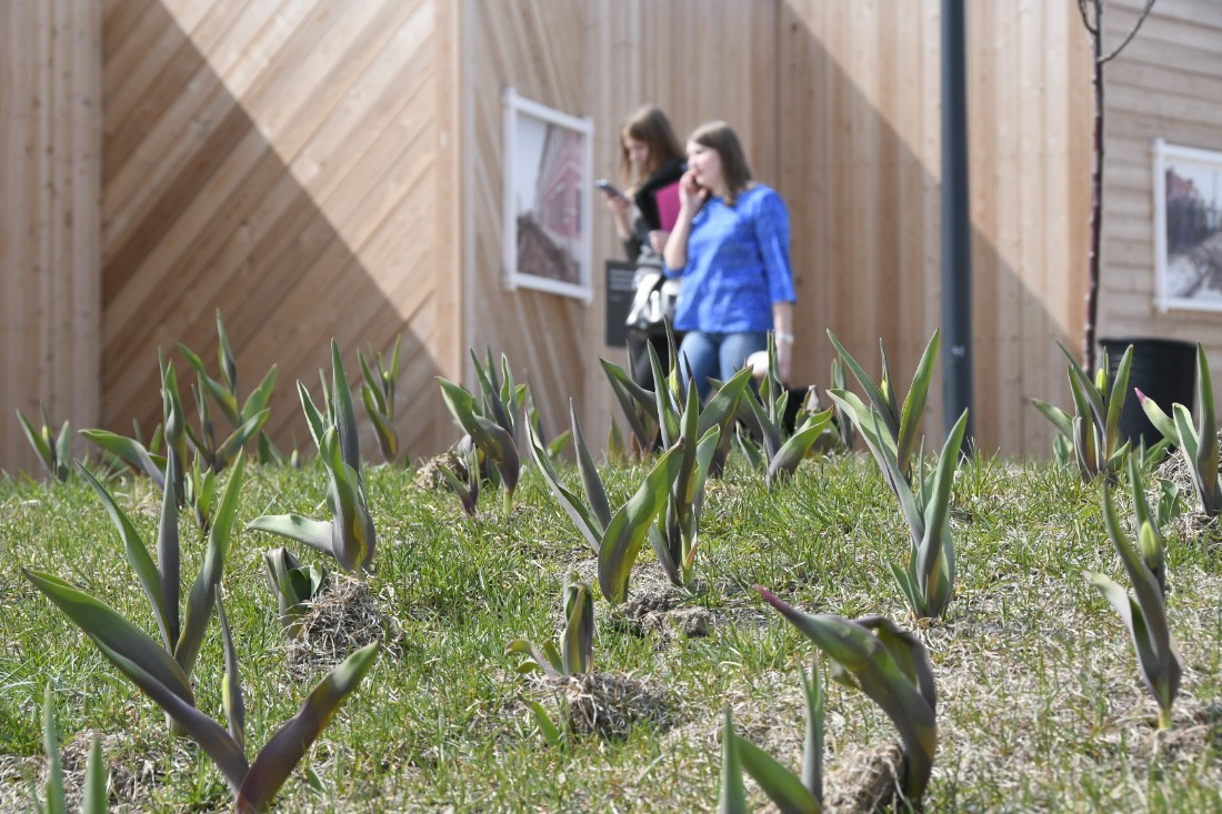 Весна в городе: ФОТО
